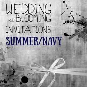 Summer / Navy